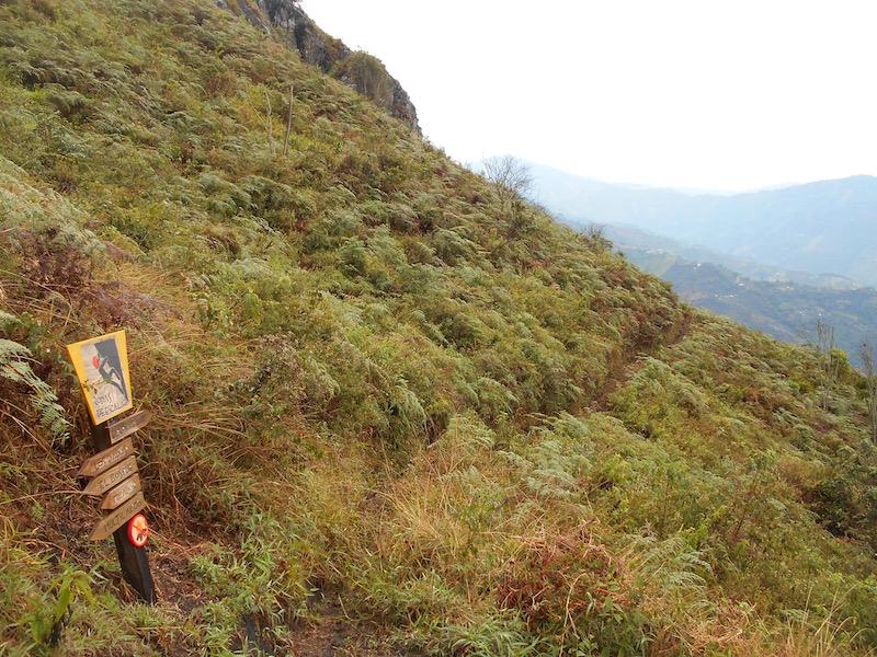 Abejorral de Pena escalar, medellin colombia